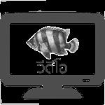 วีดีโอ ปลาเสือตอ